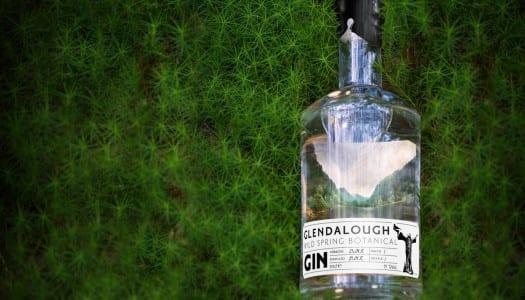 Dublin Gin & Tonic Fest!